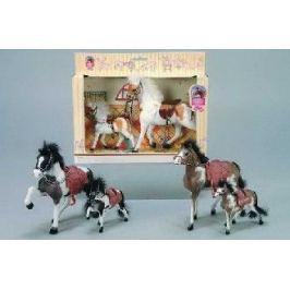 SIMBA - kůň Beauty Pferde