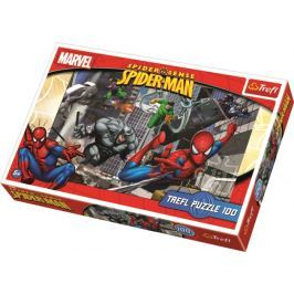 TREFL - Puzzle Spider I 100 dílů