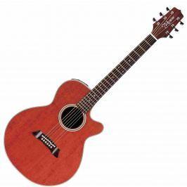 Takamine EF261SAN 6-strunné elektroakustické kytary