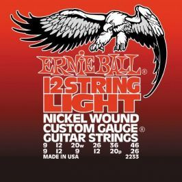 Ernie Ball 2233 12 string Nickel Wound