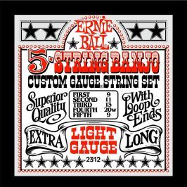 Ernie Ball 2312 5-string Banjo Stainless Steel Light