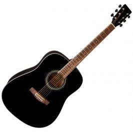 VGS PS501316 Acoustic Guitar vgs D-10 Black