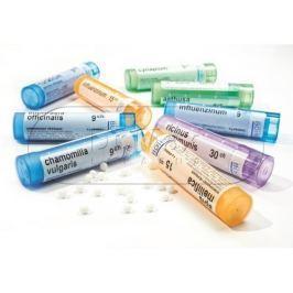 Boiron Apis Mellifica CH30 granule 4 g