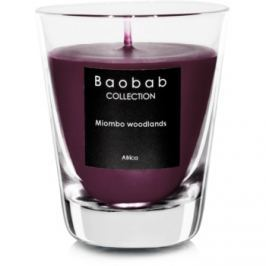 Baobab Miombo Woodlands vonná svíčka   (votivní)