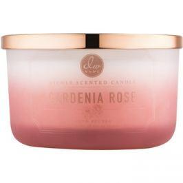 DW Home Gardenia Rose vonná svíčka 382,7 g