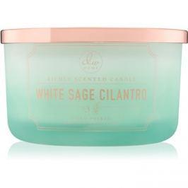 DW Home White Sage Cilantro vonná svíčka 382,44 g