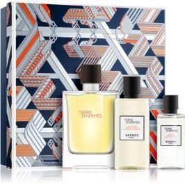 Hermès Terre d'Hermès dárková sada VIII.  toaletní voda 100 ml + sprchový gel 80 ml + voda po holení 40 ml