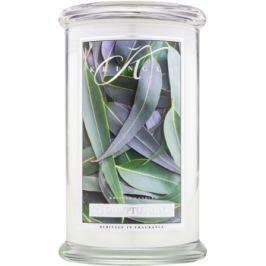 Kringle Candle Eucalyptus Mint vonná svíčka 624 g