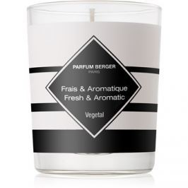 Maison Berger Paris Anti Odour Tobacco vonná svíčka 180 g II. (Fresh and Aromatic)