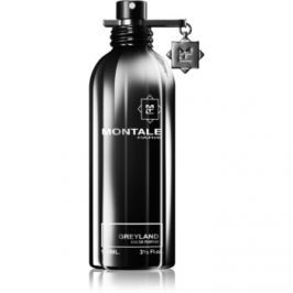 Montale Greyland parfémovaná voda unisex 100 ml