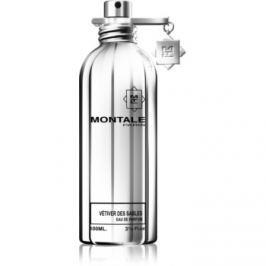 Montale Vetiver Des Sables parfémovaná voda unisex 100 ml