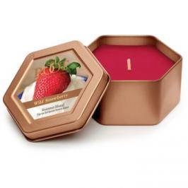 Root Candles Wild Strawberry vonná svíčka 113 g v plechovce