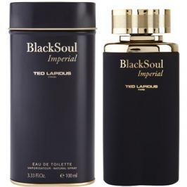 Ted Lapidus Black Soul Imperial toaletní voda pro muže 100 ml