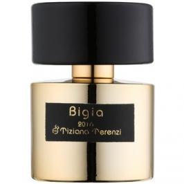 Tiziana Terenzi Bigia parfémový extrakt unisex 100 ml