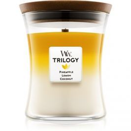 Woodwick Trilogy Fruits of Summer vonná svíčka 275 g střední