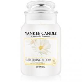 Yankee Candle Early Spring Bloom vonná svíčka 623 g Classic velká