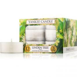 Yankee Candle Linden Tree čajová svíčka 12 x 9,8 g
