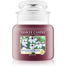 Yankee Candle Madagascan Orchid vonná svíčka 411 g Classic střední