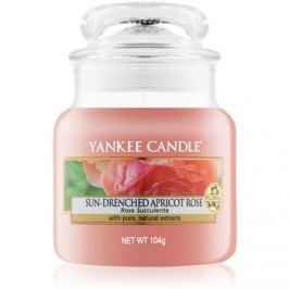 Yankee Candle Sun-Drenched Apricot Rose vonná svíčka 104 g Classic malá