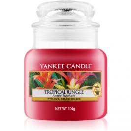 Yankee Candle Tropical Jungle vonná svíčka 104 g Classic malá
