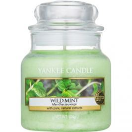 Yankee Candle Wild Mint vonná svíčka 104 g Classic malá