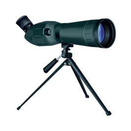 CNR 20 - 60 x 60 Spotty