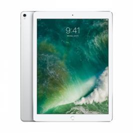 Apple Wi-Fi 256 GB - Silver (MP6H2FD/A)