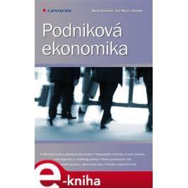 Podniková ekonomika - Vochozka Marek, Mulač Petr, kolektiv