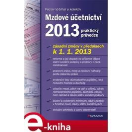 Mzdové účetnictví 2013 - Václav Vybíhal