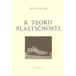 K teorii plastičnosti - Petr Rezek