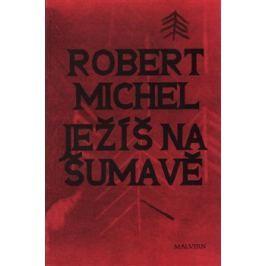 Ježíš na Šumavě - Robert Michel