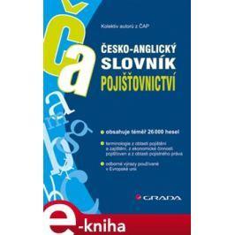 Česko-anglický slovník pojišťovnictví - Kolektiv autorů