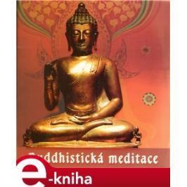 Buddhistická meditace - Roman Žižlavský
