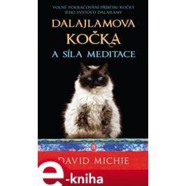Dalajlamova kočka a síla meditace - David Michie E-book elektronické knihy