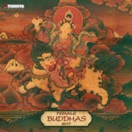 Nástěnný kalendář - Female Buddhas 2017 Kalendáře