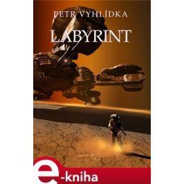 Labyrint - Petr Vyhlídka