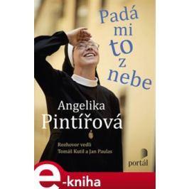 Padá mi to z nebe - Pintířová Angelika - Tomáš Kutil, Jan Paulas