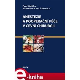 Anestezie a pooperační péče v cévní chirurgii - Petr Štádler, Pavel Michálek, Michael Stern