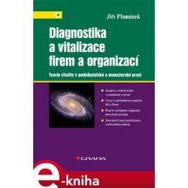Diagnostika a vitalizace firem a organizací - Jiří Plamínek